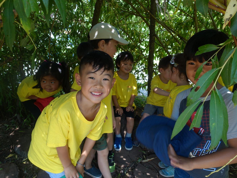 SWAN Summer Program Field Trip