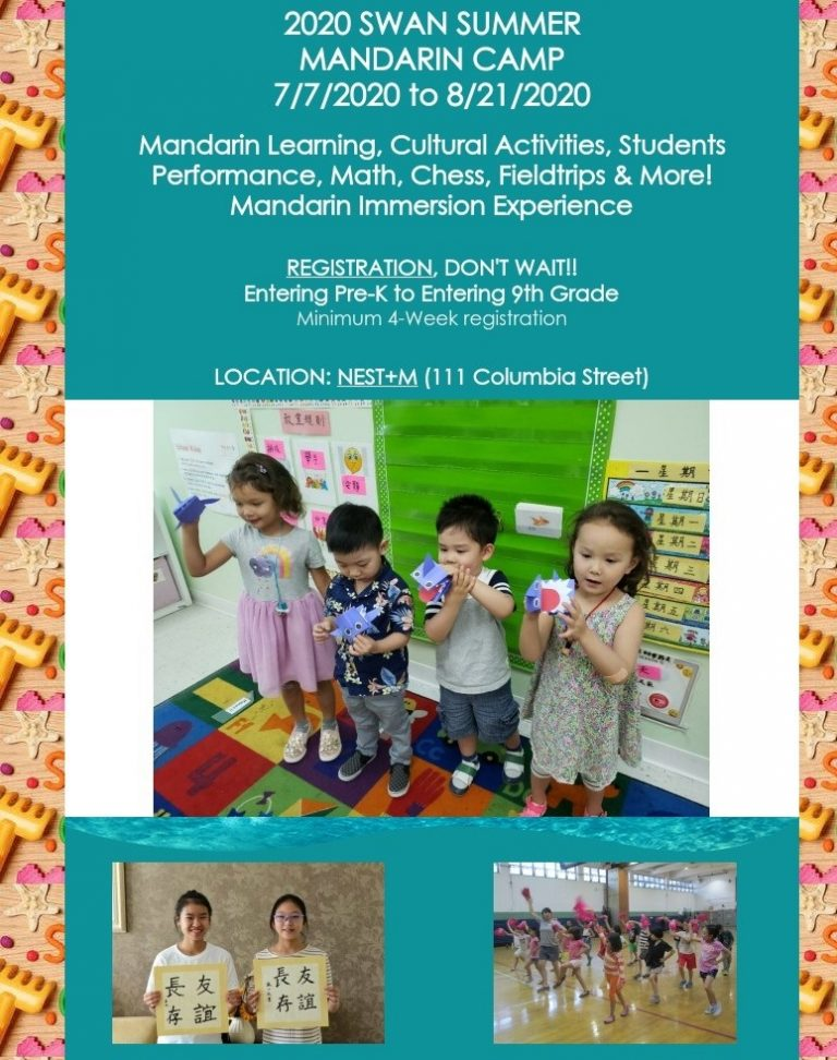 2020 Virtual Mandarin Immersion Camp